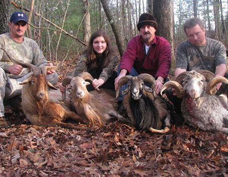 TN grand slam ram hunt